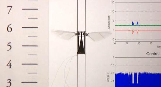 这是研制实验室对外展示的一段录像中的截图,显示一台微型飞行机器人正振翅执行垂向飞行测试,系统采用了闭合线路控制