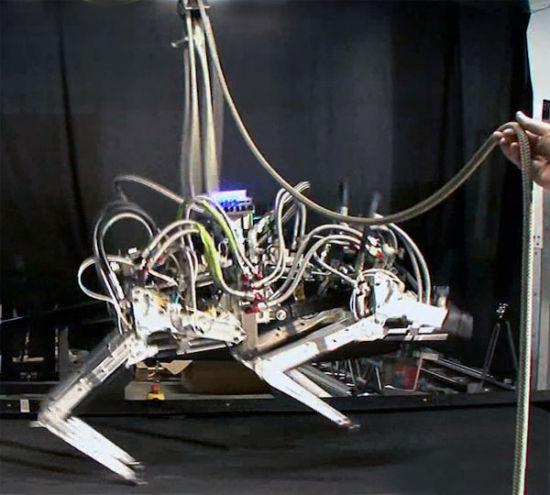 """由波士顿动力工程公司研制的机器人""""猎豹""""成为速度最快的四腿机器人。"""
