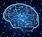 电刺激大脑能提高记忆力?